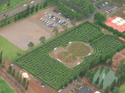 Dole Maze from Helicopter