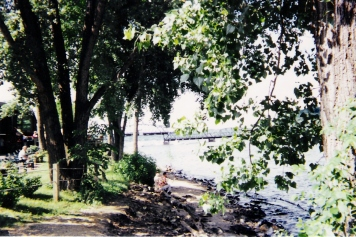 Picture of Stillwater through trees